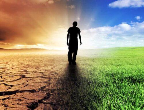 Piacere e dolore: le due leve che muovono le persone